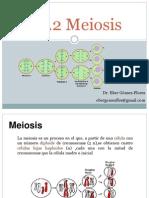 1.2.2 Meiosis.pdf