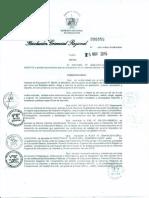 Directiva 020-15 Lineamientos finalizacion año escolar 2015.pdf