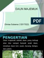 Daunmajemuk Copy 131013042607 Phpapp01