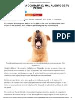 Cinco Tips Para Combatir El Mal Aliento de Tu Perro