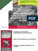 Jornada Técnica 2013. Charo Torres Pel PATT1369734410844