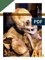 Cráneos alargados