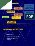 02 - Entamoeba Histolitica, Entamoeba Coli