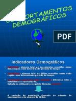 Comportamentosdemogrficosaula 131005172259 Phpapp02 (2).Ppt 0
