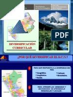 Diapositivas de DIVERSIFICACIONcta.ppt