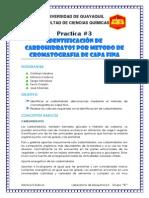Practica 3 Lab de Bioquimica II (Identificacion de Carbohidratos Por Metodo de Cromatografia de Capa Fina)