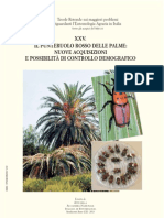 Il Punteruolo Rosso dell palme