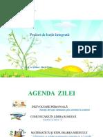 Proiect Pentru Didactic