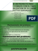diseodeproyectocuniculturagrupo20unad-121206121144-phpapp01.pptx