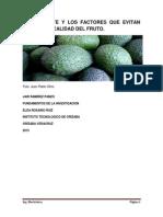 EL AGUACATE Y LOS FACTORES QUE EVITAN UNA BUENA CALIDAD DEL FRUTO.pdf