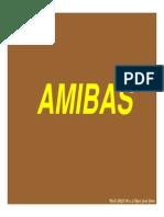 Amebiosis 2007 B