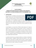 Plan de Trabajo LACTANCIA MATERNA EXCLUSIVA