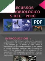 Recursos Hidrobiológicos del Perú.pptx