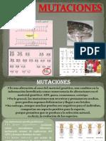MUTACIONES DEL ADN