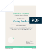 ihi basic cert in quality and safety