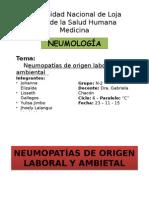 Neumopatías de Origen Laboral y Ambiental