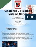 Anatomà a y Fisiologà A