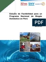 Estudio Factibilidad Programa Biodigestores Domesticos Peru Corregido Ok 20ago2012