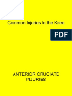 Common Injuries to the Knee, Leg, Ankle
