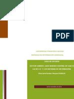 trabajo final sistemas de info.pdf