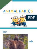 animal babies22