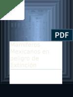 Texto Academico Mamiferos en Peligro de Extinción