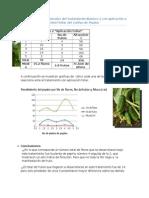 Tratamiento Foliar Pepino