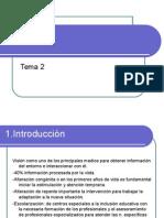 Tema 2 Diversidad Funcional Visual