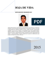 Hv Ing Mauricio Granados 23 11 2015