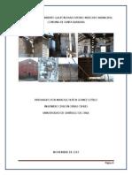INFORME  LEVANTAMIENTO GALPON DE ADOBE DE FUTURO MERCADO PARA LA COMUNA DE SANTA BARBARA rev1.pdf