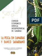 La Pesca en Canarias y Banco Sahariano