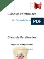 Ca+ y paratiroides