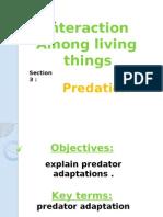 predator adaptation