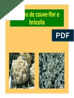 Cultivo Couve-flor