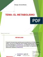 Procesos Metabolicos (Anabolismoh y Catabolismo)