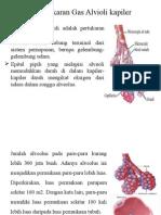 Pertukaran Gas Alveoli-kapiler