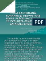 Placa Bacteriană. Formare Şi Dezvoltare Presentations