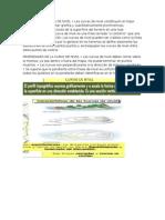 DEFINICIÓN DE CURVA DE NIVEL.docx