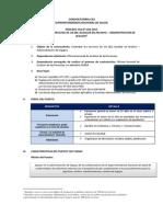 Convocatoria Cas 200-2015 (3)