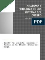 Heed 1500anatomia y Fisiologia de Los Sistemas Del Cuerpo