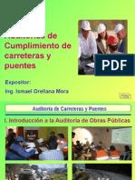Auditoria de Carreteras y Puentes - InADEP Tarapoto-Moyobamba