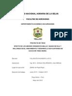 Proyecto Villanueva