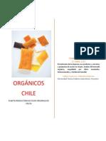 Proyecto Pulpa Fruta