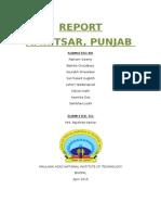 AMRITSAT PUNJAB REPORT.docx