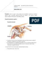 Traumatisme Osteo