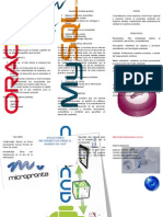 Micropronta1.docx