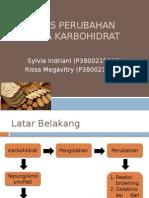 Jenis Perubahan Pada Karbohidrat