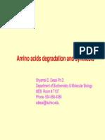 Amino Acids overview