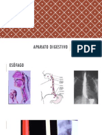 Imagenolgía Aparato digestivo