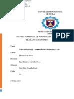 Resumen Carta (13-h).